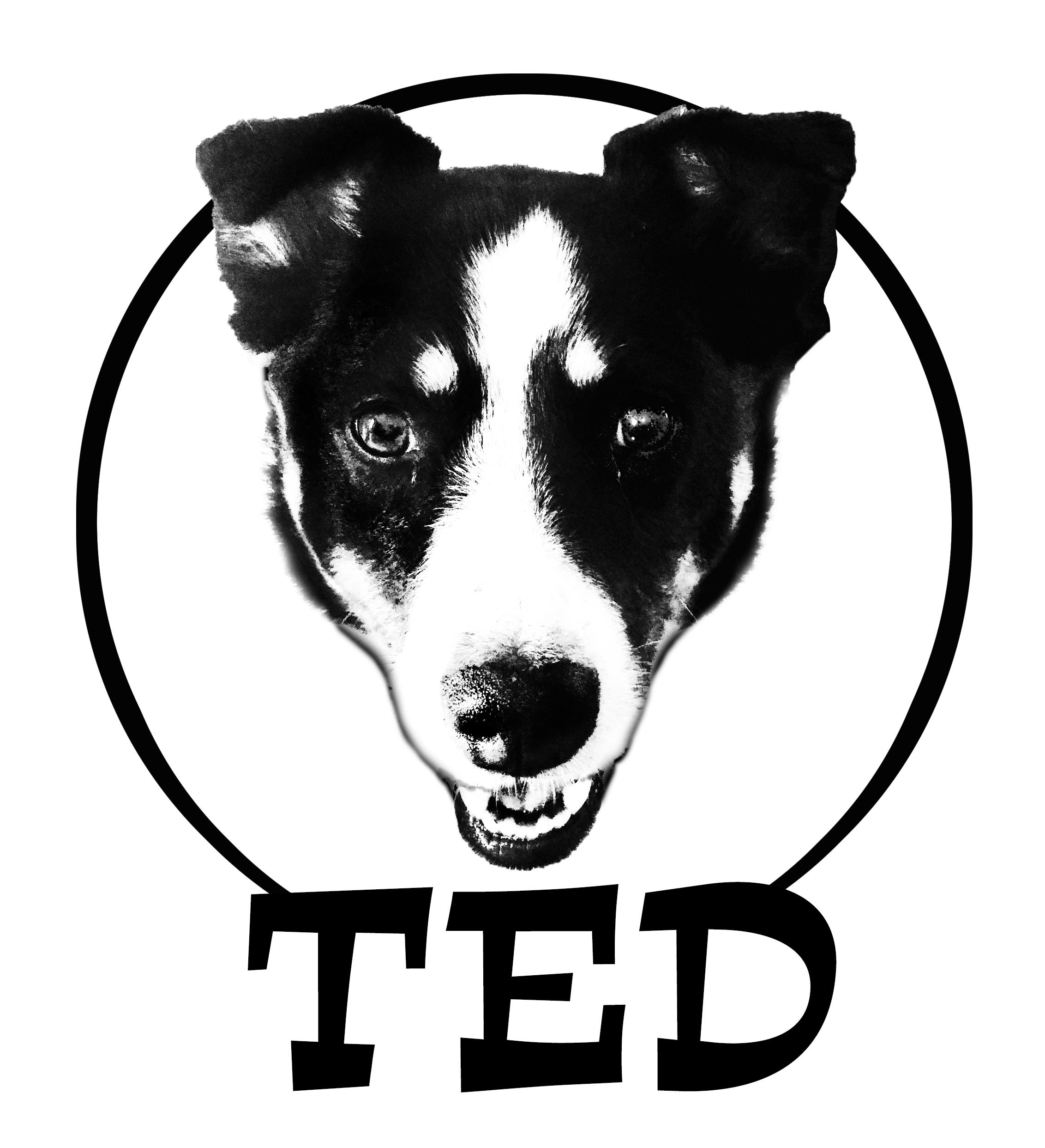 Ted / Baxter / Scarlet / Ryan